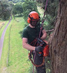 DL Corran Tree Surgery Services Abergavenny