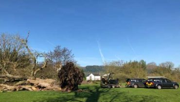 Emergency-Call-Out-Services-D-L-Corran-Tree-Surgeons-Newport