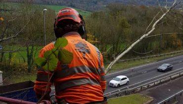 Motorway Maintenance D L Corran Tree Surgeons Monmouth