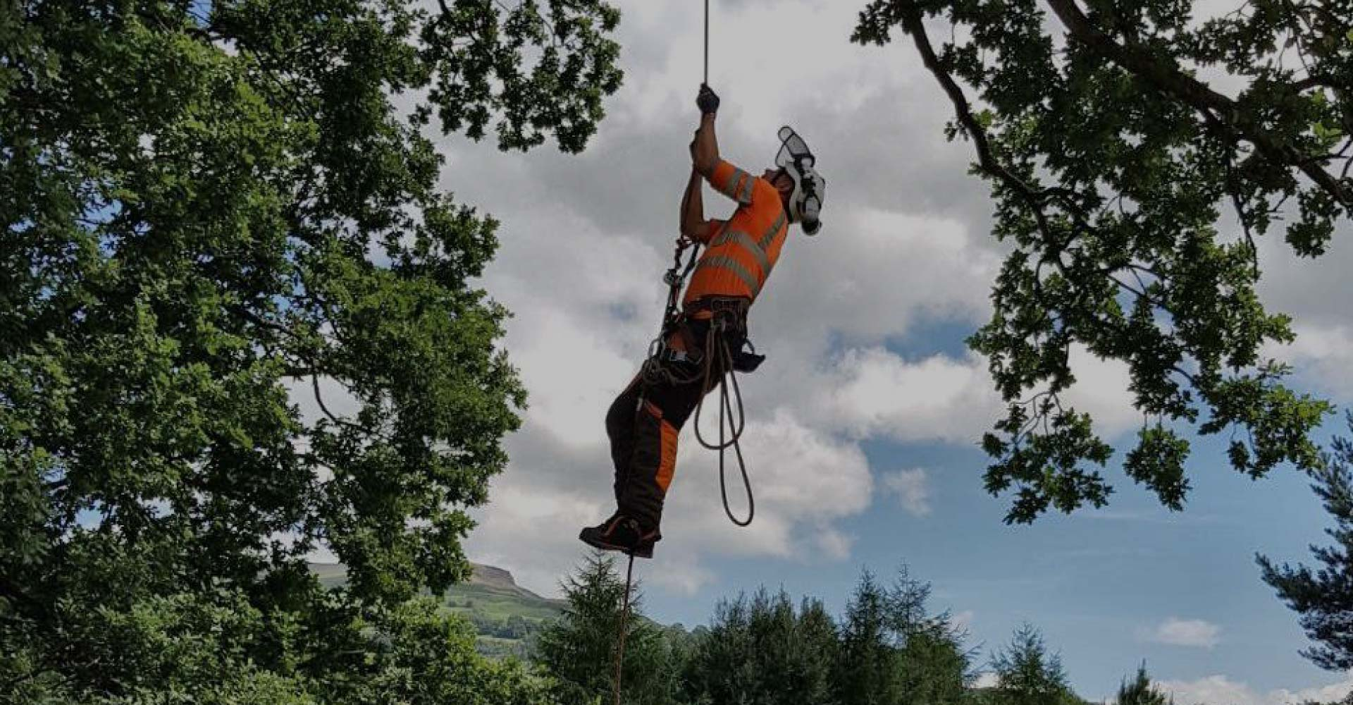 D L Corran Tree Surgeons Abergavenny Slider 1
